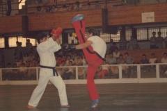 exhibicic3b3n-artes-marciales-feria-de-albacete-1981-1024x678