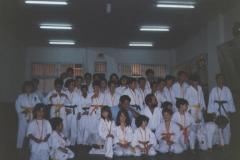 clase-de-karate-infantil-19891-1024x731